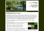 Screenshot Woodland Stream full template.